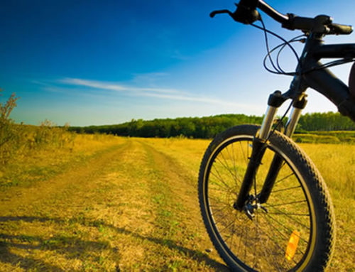 Cycling routes between Mantova and Verona: our Hotel is bike friendly