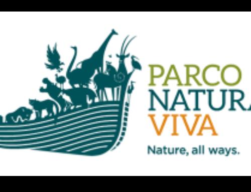 Aperture serali al Parco Natura Viva