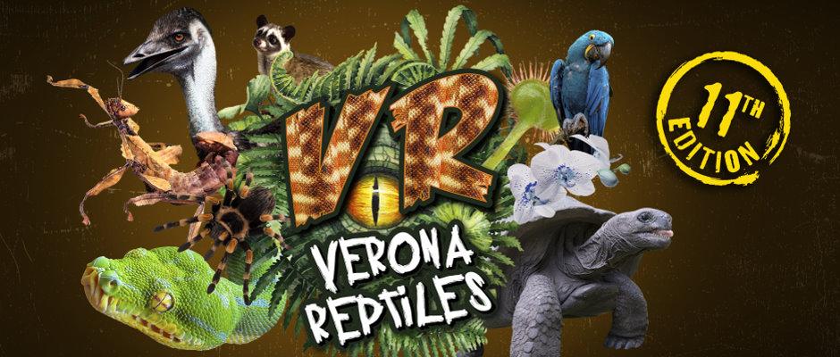 Verona Reptiles – 3 Ottobre 2021